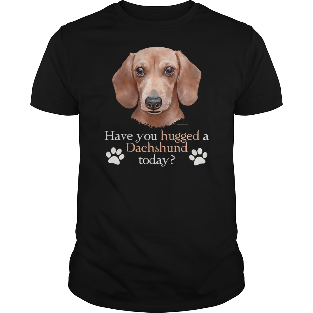 Have You Hugged A Dachshund Today T-Shirt