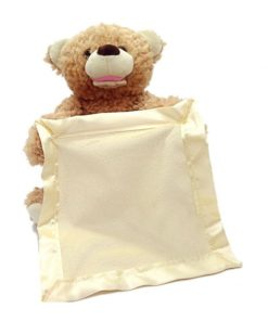Teddy Bear Peek a Boo Plush Toy